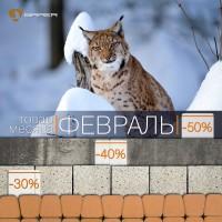 Акция месяца ФЕВРАЛЬ на тротуарную плитку BRAER