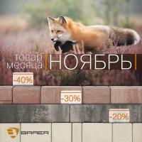 Акция месяца НОЯБРЬ тротуарную плитку BRAER